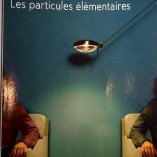 Les particules élémentaires